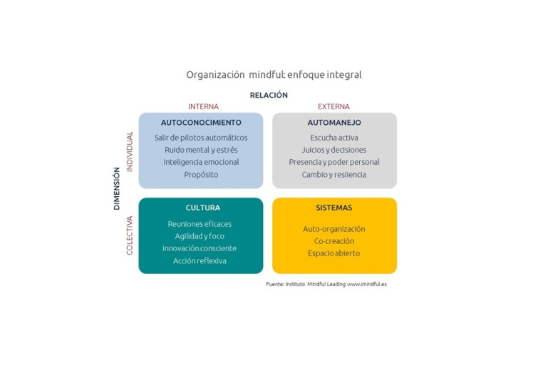Org mindful vpequeña